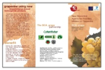 BCA grape Work Project 7 - leaflet
